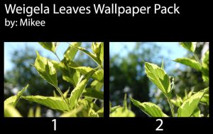 Weigela Leaves Wallpaper Pack by mikee99