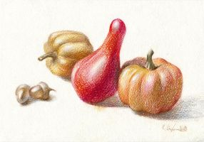 Still life with the little pumpkins by OlgaSternik