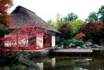 Japanese Garden by Jaqila