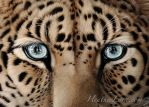 Kim Lee Closeup by Heatherzart