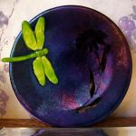 Daisy + Dragonfly Fused Plate by pipingplover