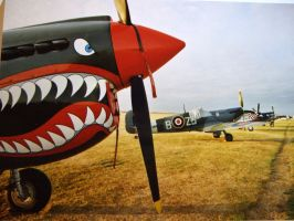 p40e on flight line ofmc by Sceptre63