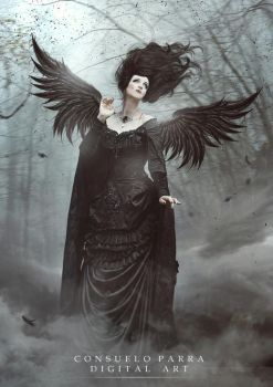 Dark angel by Aeternum-designs