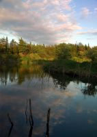 Beaver pond 2 by LucieG-Stock