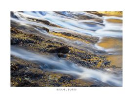 Bear Creek Gold by yenom