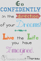 Dreams quote cross stitch preview by mew-trainer-rose