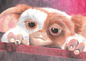 Gizmo by CHiCOwasHERE