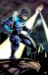 Nightwing by WiL-Woods