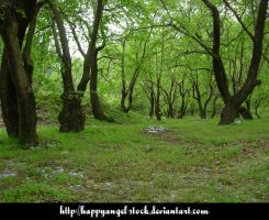 Trees-1 Stock by HappyAngel-STOCK