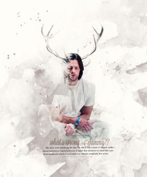 Sam Winchester by alexsexklaus