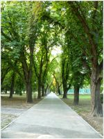 Park by Ph1at1ine