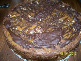 Turtle Cheesecake by annieheart12