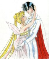 SM: moon Princess and Tuxedo M by Zels
