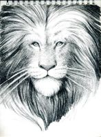a sketch of Aslan by MichelRipetti