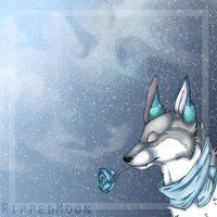 Winter by RippedMoon