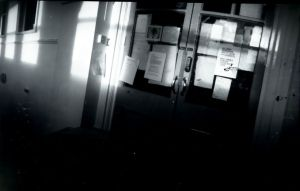 Pinhole 2 by swineandroses