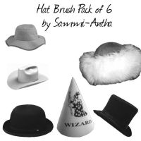 Hat Brush Pack of 6 by sammi-antha-stock