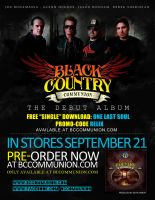 Black Country Communion - AD2 by mvgraphics