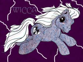 MLP- Wicca by chollapony
