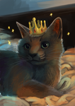 cat by Silverbirch