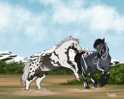 Herd Ranking by ShapeShifter314