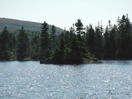Long Pond II the Island by AmericanWolf016