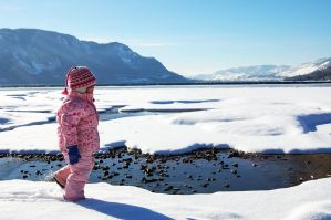 Little Arctic Explorer by rockinxrebecca