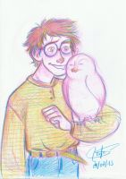 Harry and Hedwig by SerifeB