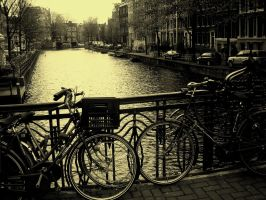 Canals of Amsterdam by cofactor