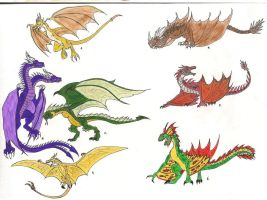 Dragons: Wyverns 1 by Crystaldemon93