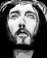 The Passion of the Christ by dgsudharsan