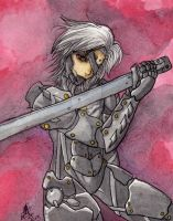 Raiden Metal Gear Rising by ArGe