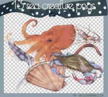 Sea Creature PNGS by hellotherelily