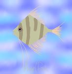 ...:-Angel Fish-:... by PrincezzRee