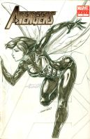 Wasp BC (pencils) by emmshin