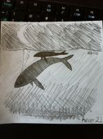 DS August 21 - Whales by modestmonster