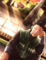 Shikamaru by PumpkinDanko