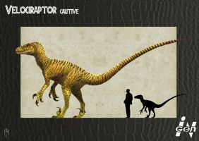 JP cautive raptor remake by JELSIN