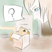 Cat in box by M-chaan