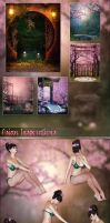 Asian Inspirations Backgrounds and Poses by cosmosue