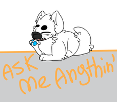 Ask me anythin' by PearJawLock