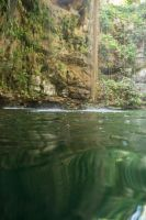 Deep Green Cenote Stock by little-spacey
