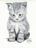 Ballpoint Kitty by Cindy-R