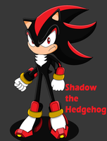 Sonic 25th Day 18: Shadow the Hedgehog by SuperSentaiHedgehog
