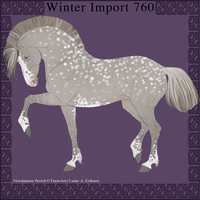 Nordanner Winter Import 760 by DemiWolfe
