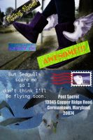 Flying shoes post secret by Lafire