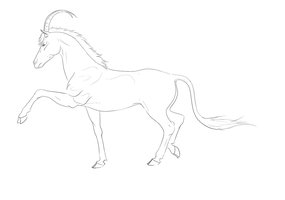 Sable Horse Lineart by TalonV