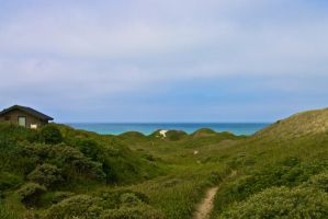 Hirtshals by FranciscaMeena