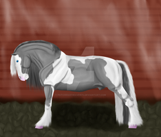 Cairo-old ref-5yr by patchesofheaven74