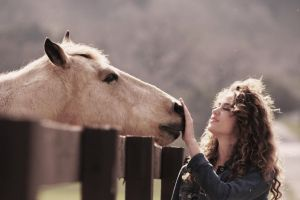 Horse Meets Girl by OrioNebula